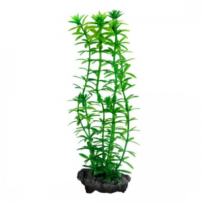 Tetra ANACHARIS DecoArt Plant M 23 см
