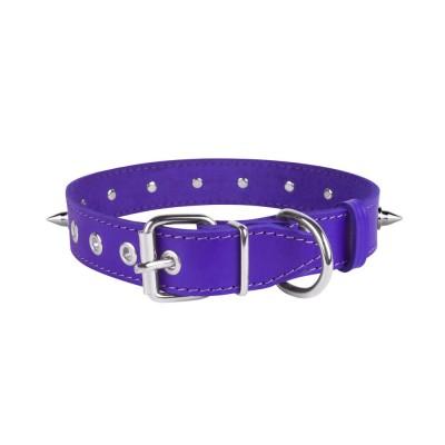 Ошейник для Собак Кожаный BronzeDog Classic со Стальной Фурнитурой и Шипами Фиолетовый